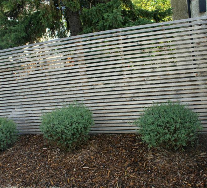 JPL Fence Bushes